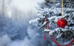 Weihnachtsgrüße